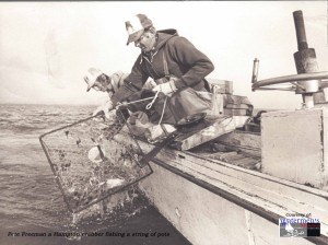 Pete Freeman a Hampton crabber fishing a string of pots