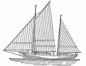 Chesapeake Bay Bugeye